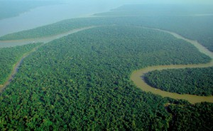 Image courtesy of Wikipedia, https://en.wikipedia.org/wiki/Amazon_River