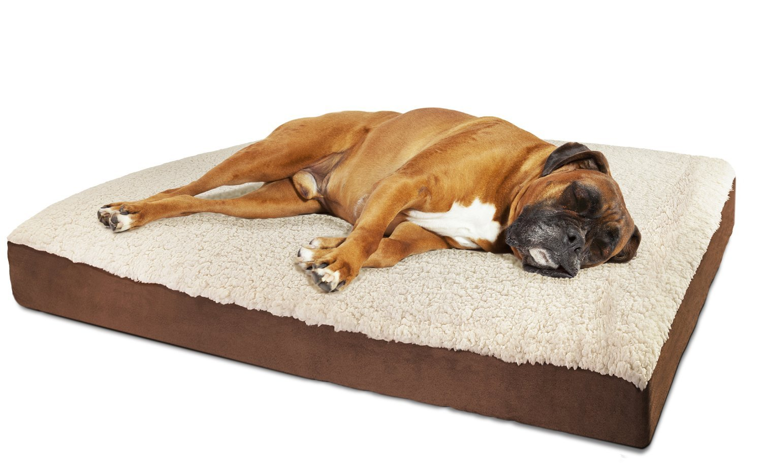 charlies oval red zoom large bed extra petface oxford loading beds direct dog